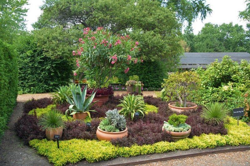 Les plantes succulentes et l 39 art du jardinage for 860 plante st hyacinthe