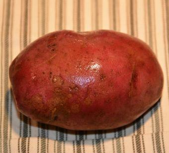 Cette pomme de terre a un haut taux d'antioxydants.