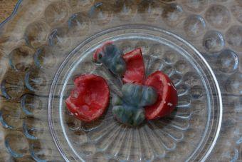 Les fruits sont solitaires ou en groupe de deux à cinq.