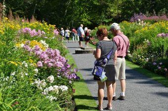 Visiteurs au Jardin