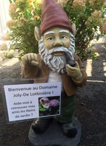 Platonius - Chef des Nains de jardin