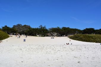 Plage sable Carmel-by-the-Sea