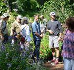 Albert Mondor visite jardins