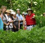 Larry Hodgson visite jardins